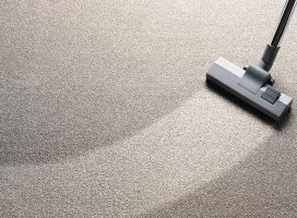 Carpet Cleaning Of Manicure