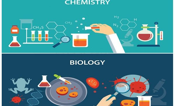 A Simple Guide To Ace Your 11th Grade Biology And Chemistry Exams