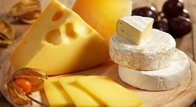 Tips on Purchasing Cheese from a Good Delicatessen