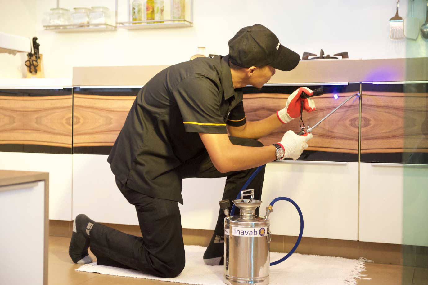 Things to Do after Pest Control Treatment